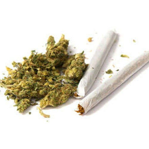 Marijuana Use in Malta